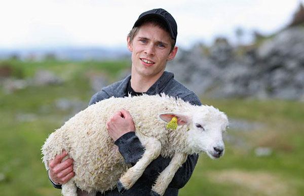 Two men saved a drowning lamb