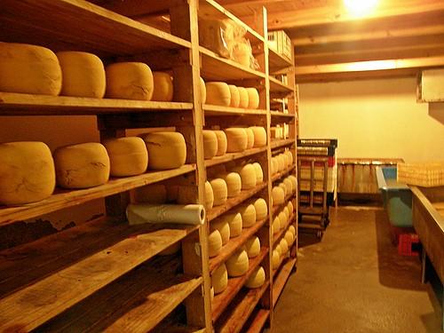 fabrica de queso 2