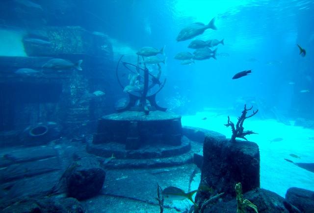 Modern Atlantis Aquarium At Atlantis Hotel Resort
