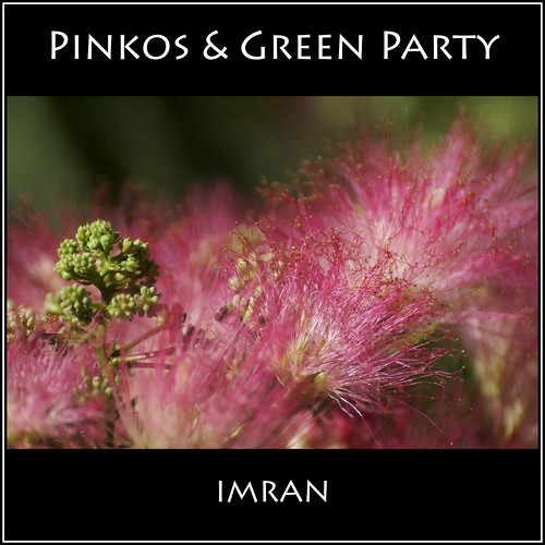 pink trees red newyork tree green nature leaves outdoors suffolk nikon seasons framed longisland imran d300 patchogue imrananwar eastpatchogue