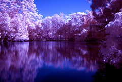 Bundaberg Infrared