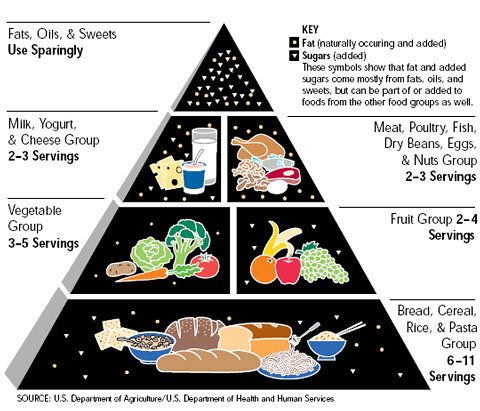 The Original Food Pyramid