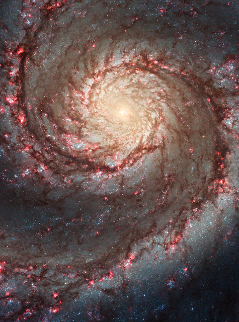 The Two-faced Whirlpool Galaxy