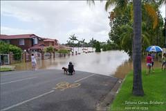 Brisbane flood, The Centenary suburbs