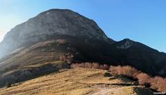 Pian d'Ortica (monte Catria)