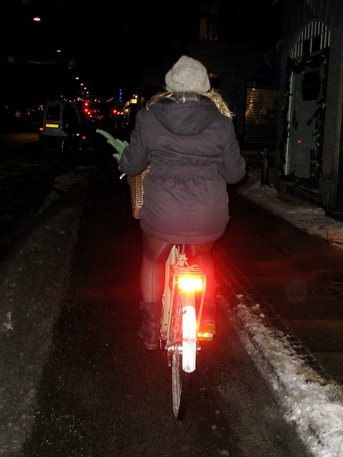 Evergreen - Cycling in Winter in Copenhagen