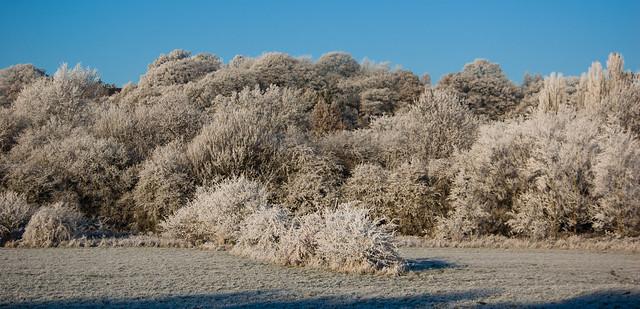 Tettenhall ridge from Barley Field