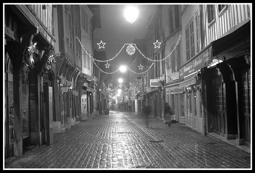 "troyes from the book ""Of Walking in Ice (2007)"" by Werner Herzog"