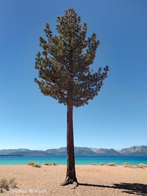 Lake Tahoe, Nevada, September 2010