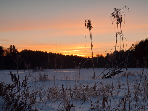 morning trees winter sky snow cold ice water forest sunrise landscape dawn frozen woods nh