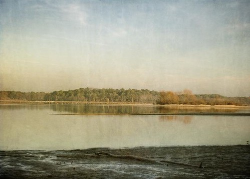 morning trees winter sky lake reflection water clouds canon landscape glow texas mud shore textured lakepalestine t1i