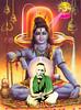Lord Shiva as Sesha Mahan (-Shri. Shankar)