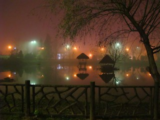 The Park in Foggy Night