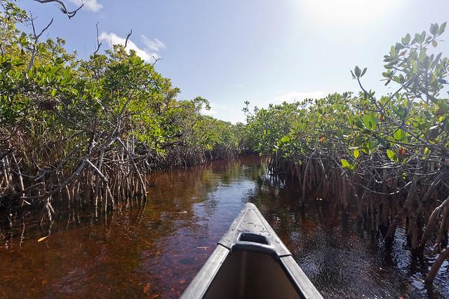 The Hells Bay Canoe Trail