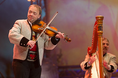 bowed string instrument, violinist, classical music, string instrument, musician, violin, viol, viola, music, fiddle, entertainment, performance, violist, string instrument,
