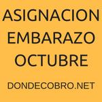 Asignación por Embarazo en octubre 2016