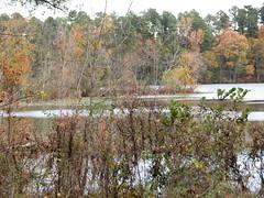 Walnut Creek Lake Raleigh NC 0477
