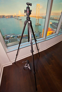Lisa's new Manfrotto 055CXPRO3 tripod!