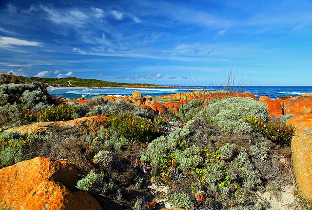 塔斯马尼亚岛 国王岛上的英国海军上将海滩