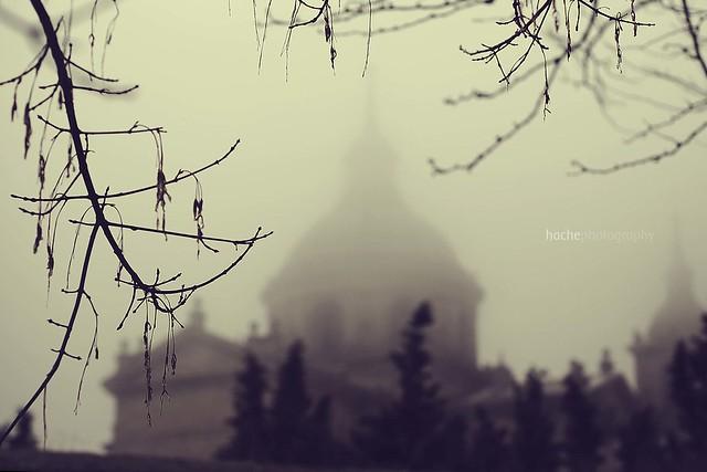 Ensoñación ... Entre neblinas
