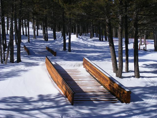 Great Divide Wildwood Park