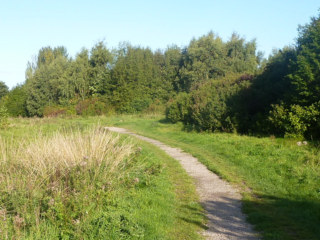 Highfield Country Park Near Me
