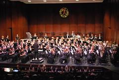 choir, classical music, musician, orchestra, musical theatre, musical ensemble, audience, concert, performance, person,