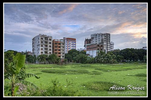 lake sunrise dhaka bangladesh gulshan alisonkruger 4wdauscom alisonkrugercom