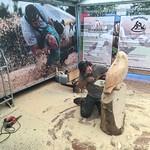 Holzkunst - Kettensägenschnitzerei 2016