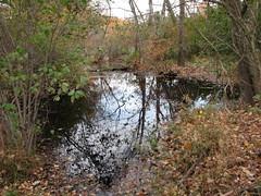 Walnut Creek Lake Raleigh NC 0485