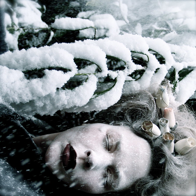 Helen Warner - She sleeps until the snow falls...
