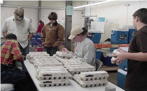 Egg Check-in at Oklahoma Food Cooperative Delivery Day