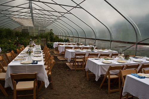 Farm dinner in the greenhouse