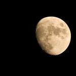 night Moon II