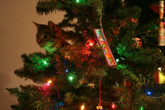 Imogen Ornament
