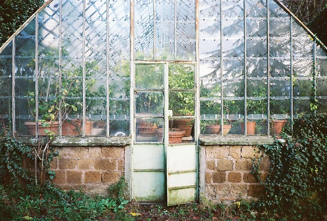 Vintage greenhouses potting sheds victoria elizabeth for Bhg greenhouse