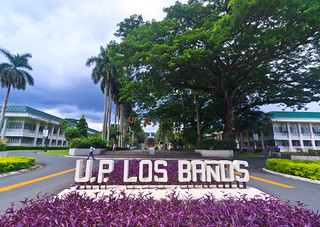 University of the Philippines at Los Banos