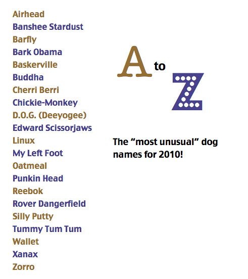 most unusal dog names ...