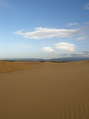 prairie(0.0), steppe(0.0), plain(0.0), plateau(0.0), wadi(0.0), grassland(0.0), erg(1.0), horizon(1.0), sand(1.0), aeolian landform(1.0), natural environment(1.0), desert(1.0), dune(1.0), landscape(1.0),