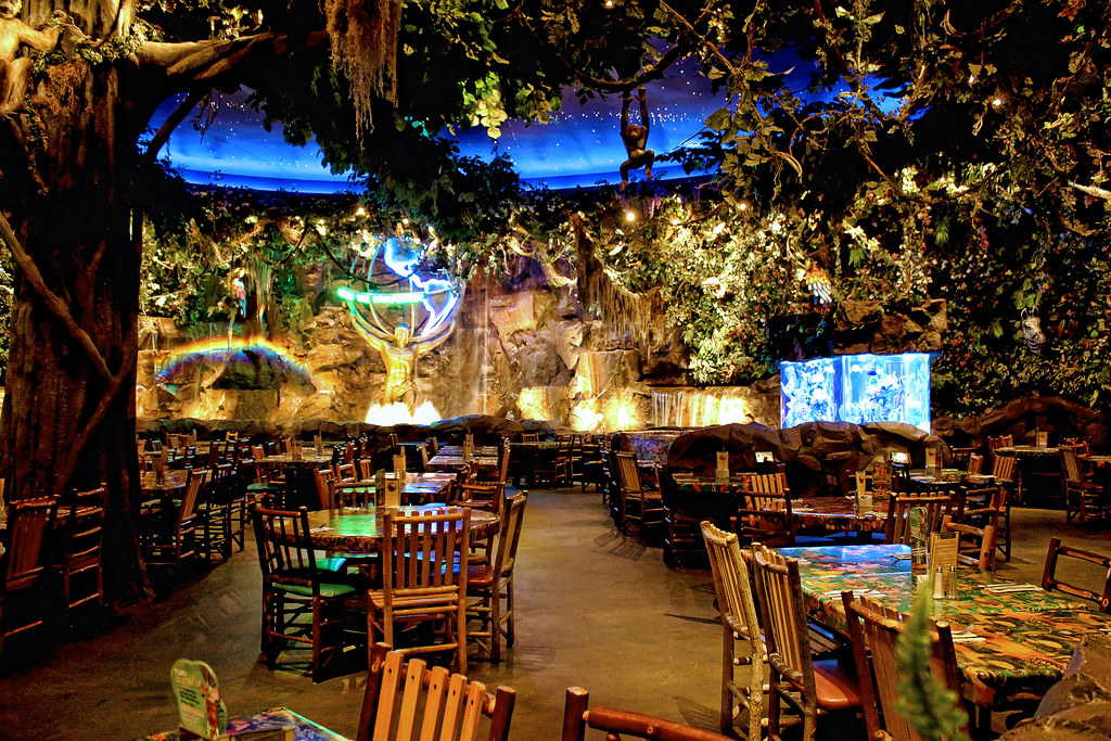 Daily Disney Rainforest Cafe We Eat At The Rainforest