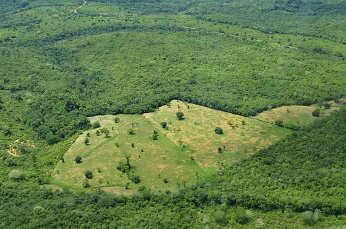 Neil Palmer (CIAT). Aerial view of the Amazon Rainforest, near Manaus, the capital of the Brazilian state of Amazonas.