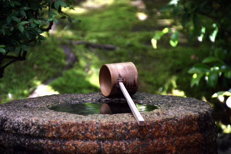 japanese garden in uji