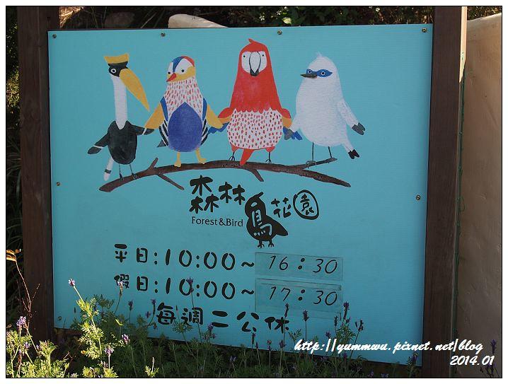 森林鳥花園3