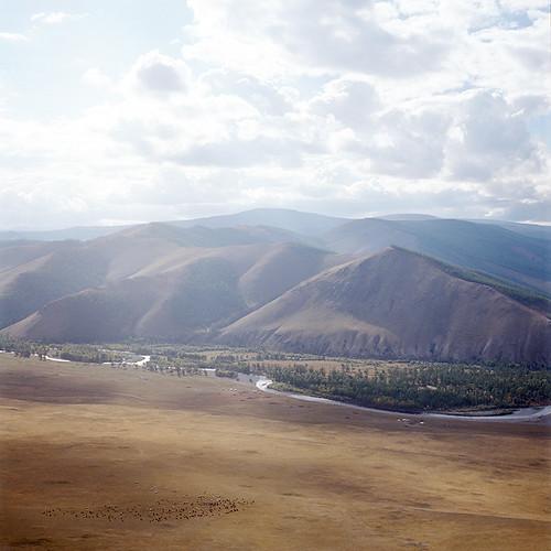 yak mountain tree nature river kodak mongolia portra yashicamat124g 400nc arkhangaï архангай цэцэрлэг