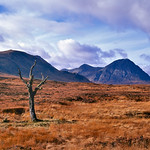 Scotland-2010-R