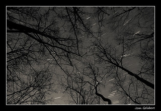 2010-12-11_01.23.56