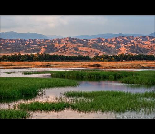 california lake grass landscape badlands lakeview morenovalley sanjacintowildlifearea mountainds