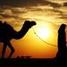 Shepherd and camel (EXPLORE) by AYMAN-ALKANDERI