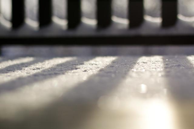 La petite neige du matin