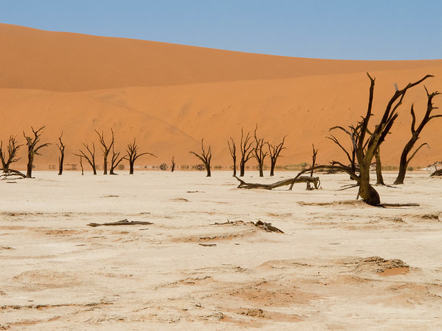 Dead Vlei. Namibia